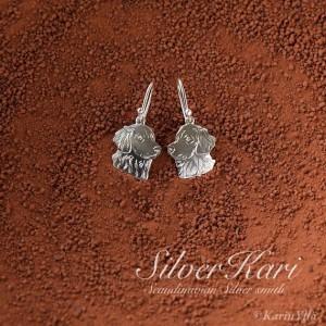 Silver Kari´s silverpack